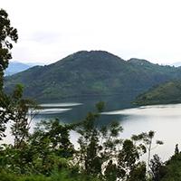 Rwanda's coffee economy