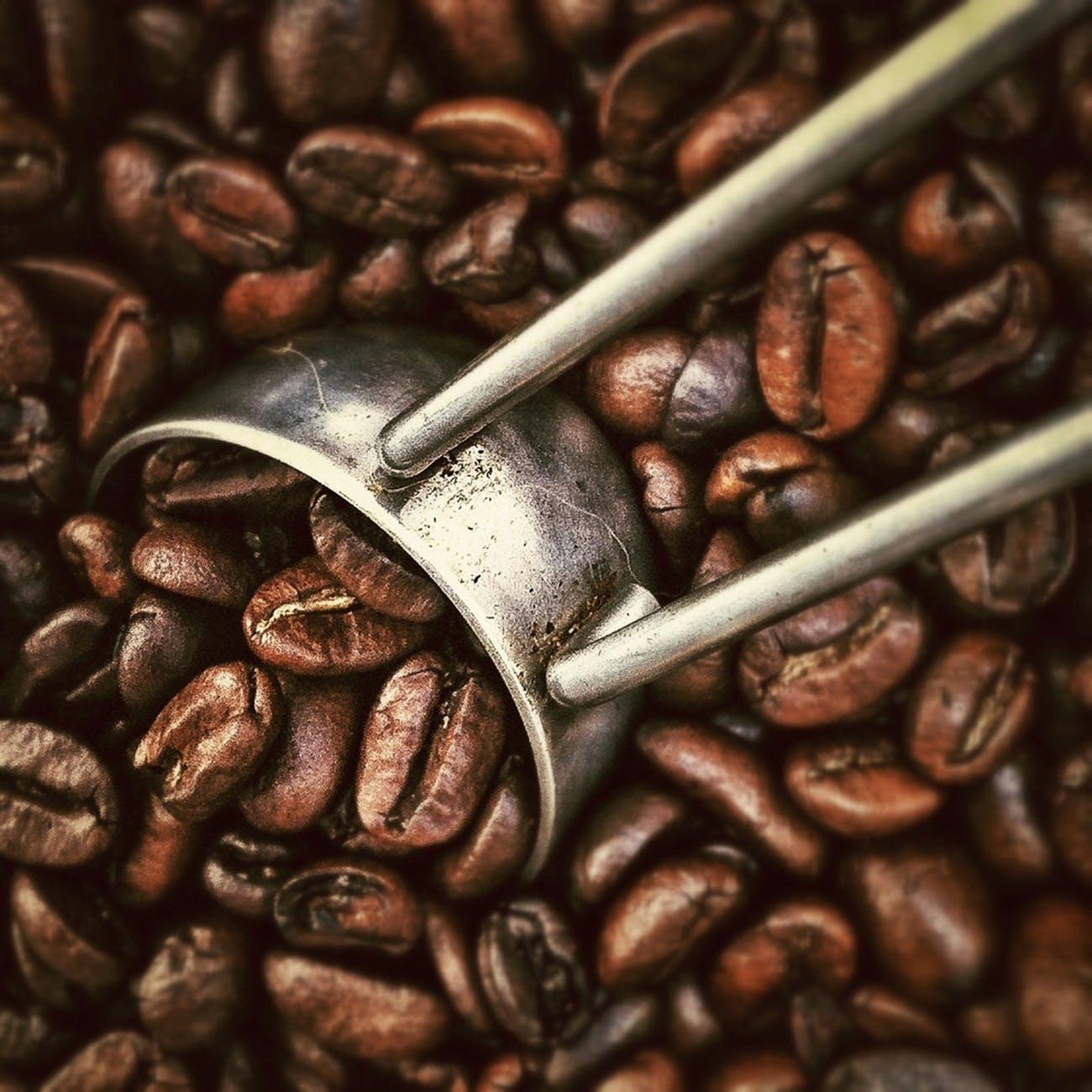 restaurant-beans-coffee-morning